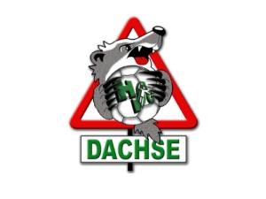 dachse